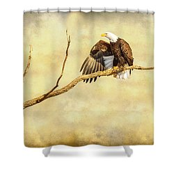 Majestic Eagle Point Shower Curtain by James BO Insogna