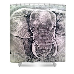 Majestic Elephant Shower Curtain