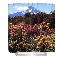 Majestic Mount Hood  Shower Curtain by Jennifer Lake