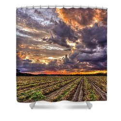 Shower Curtain featuring the photograph Majestic Peanut Harvest Sunset Art by Reid Callaway
