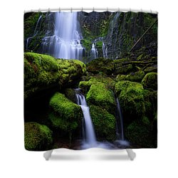 Majestic Proxy Shower Curtain