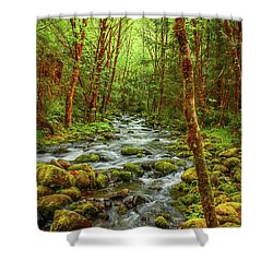 Shower Curtain featuring the photograph Majestic Stream by Tyra  OBryant