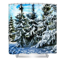 Majestic Winter In New England  Shower Curtain