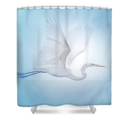 Majesty Of The Skies Shower Curtain