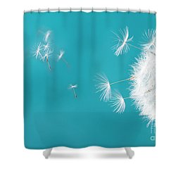 Make A Wish II Shower Curtain