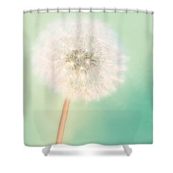Make A Wish - Large Shower Curtain