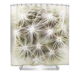 Make A Wish Shower Curtain by Marlo Horne
