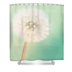 Shower Curtain featuring the photograph Make A Wish - Square Version by Amy Tyler