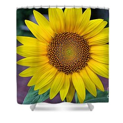 Makes  Me And You Smile Shower Curtain by John S