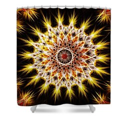 Make Your Own Sunshine Shower Curtain