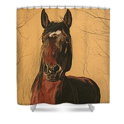 Maki Shower Curtain by Melita Safran