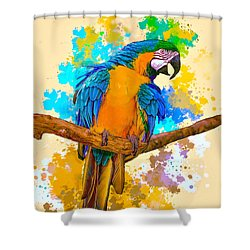 Shower Curtain featuring the photograph Making A Splash by Brian Tarr