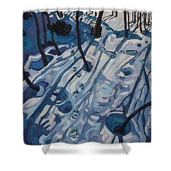 Making Tracks Shower Curtain by Phil Chadwick