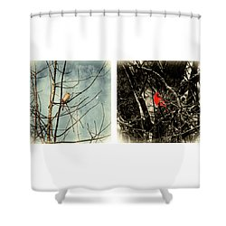 Male And Female Cardinal Shower Curtain