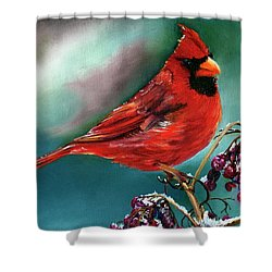 Male Cardinal And Snowy Cherries Shower Curtain