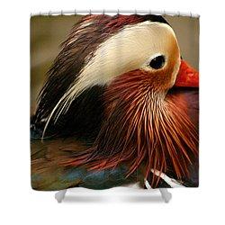 Male Mandarin Duck China Shower Curtain