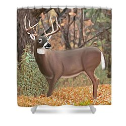 Male Mule Deer Painting Shower Curtain