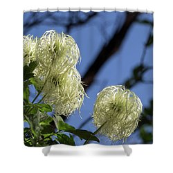 Old Man's Beard Shower Curtain