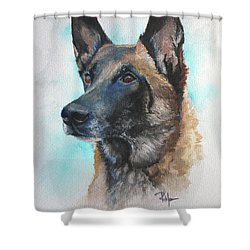 Malinois Shower Curtain