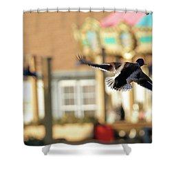 Mallard Duck And Carousel Shower Curtain by Geraldine Scull
