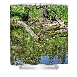 Mallard Duck Shower Curtain by Jim Sauchyn