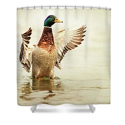 Mallard Shower Curtain by Everet Regal