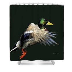 Mallard Freehand Shower Curtain by Ernie Echols