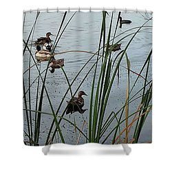 Mallard Migration Shower Curtain
