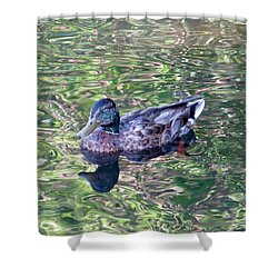 Mallard Monet Shower Curtain