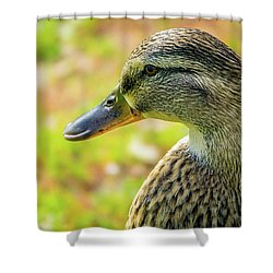 Mallard Portrait - Female Shower Curtain