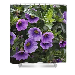 Mallow Shower Curtain by Larry Capra