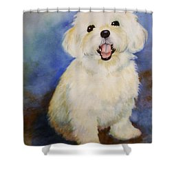Maltese Named Ben Shower Curtain by Marilyn Jacobson