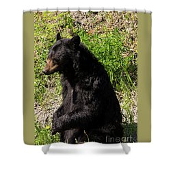 Mama Black Bear Shower Curtain
