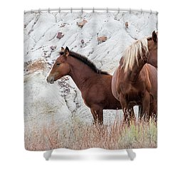 Shower Curtain featuring the photograph Mama by Kelly Marquardt