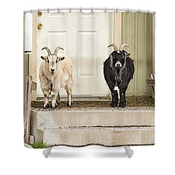 The Goat Guard Shower Curtain