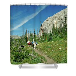 Man Hiking With Two Llamas High Alpine Mountain Trail Shower Curtain by Jerry Voss