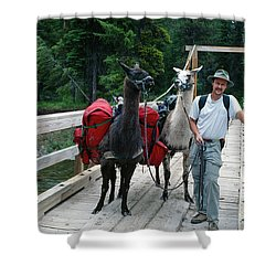 Man Posing With Two Llamas On Wilderness Drawbridge Shower Curtain by Jerry Voss