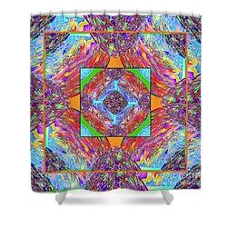 Mandala #1 Shower Curtain by Loko Suederdiek