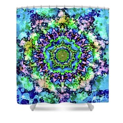 Mandala Art 1 Shower Curtain