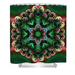 Mandala Bull Thistle Shower Curtain