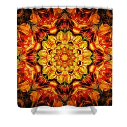 Mandala Of The Sun In A Dark Kingdom Shower Curtain