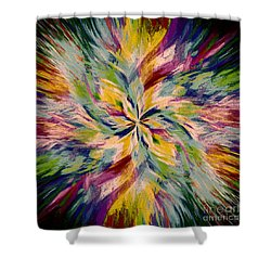 Mandala Twirl 04 Shower Curtain