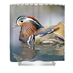 Mandarin Duck Swimming Shower Curtain