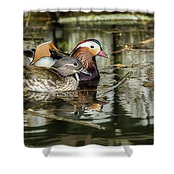 Mandarin Ducks The Couple Shower Curtain by Torbjorn Swenelius