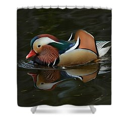 Mandarin Reflection Shower Curtain