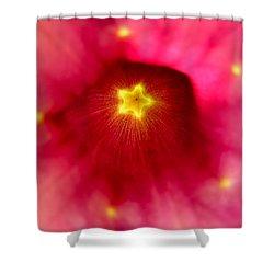 Mandevilla Star Burst Shower Curtain