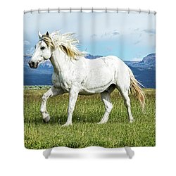 Mane And Feet Flying  Shower Curtain
