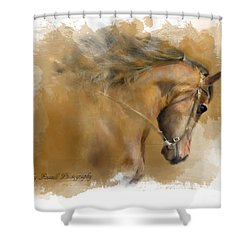 Mangalarga Marchador Shower Curtain by Kathy Russell