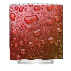 Mango Skin Shower Curtain by Steve Gadomski