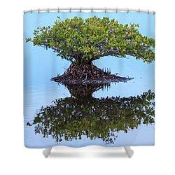 Mangrove Reflection Shower Curtain